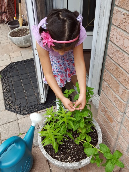 Gardening with kids | $100 Canada Giveaway| MapleandMarigold.com
