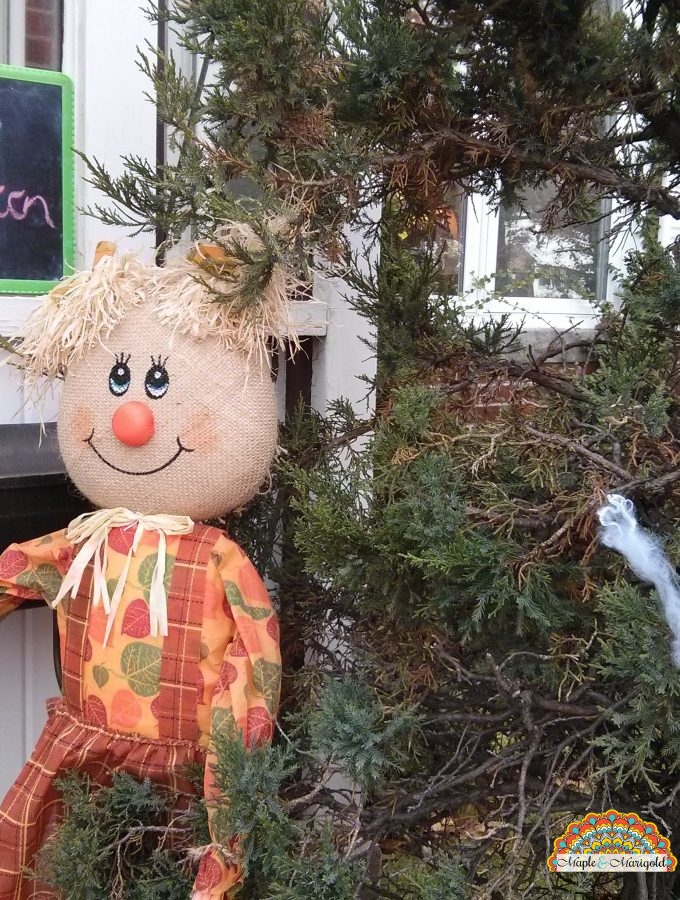 Celebrating Halloween In Canada | A New Canadian's Guide To Halloween Maple and Marigold