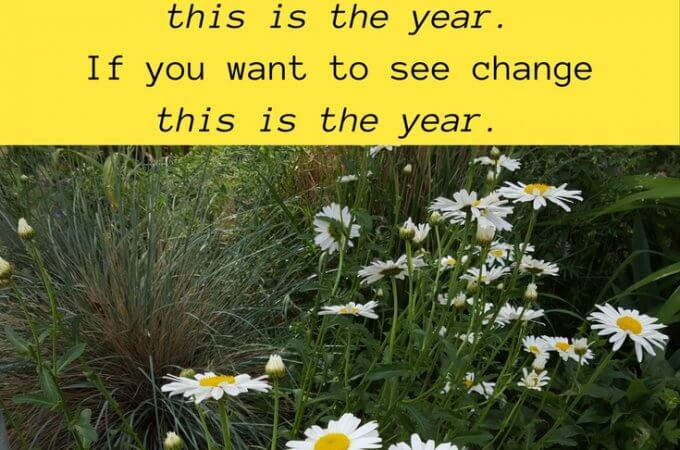 Happy 2017: No New Year Resolutions But Many Expectations | Maple and Marigold