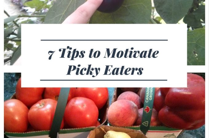 7 Tips for motivating Picky Eaters | An Early Start to Good Habits | MapleandMarigold.com