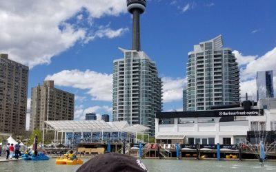 12 Family-friendly, Free March Break Activities In Toronto