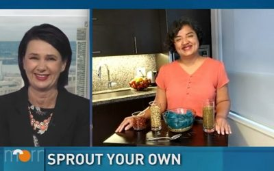 Sprout Your Own Lentils
